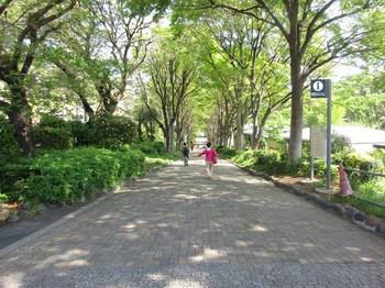 1017外堀公園 のコピー.jpg