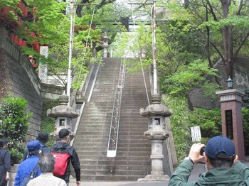 1035亀岡八幡宮石段 のコピー.jpg