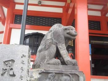 1074善国寺 のコピー.jpg