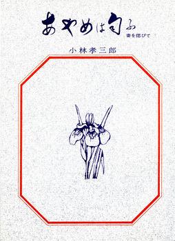 54-2.jpg