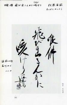 74-5.jpg