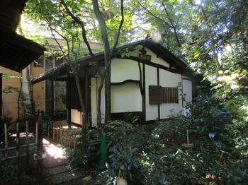 はけの森茶室 のコピー.jpg