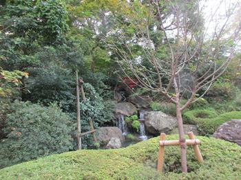 ニューオオタニ庭4 のコピー.jpg