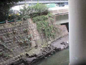 一ツ橋石垣2 のコピー.jpg