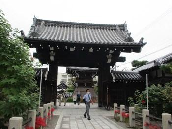 妙蓮寺6.jpg
