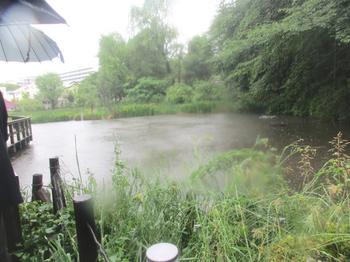 姿見の池 のコピー.jpg