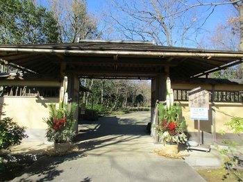 日本庭園松飾3 のコピー.jpg