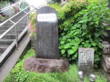 東福寺 のコピー.jpg