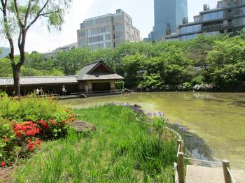 檜町公園3 のコピー.jpg