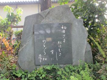 水原秋櫻子 のコピー.jpg