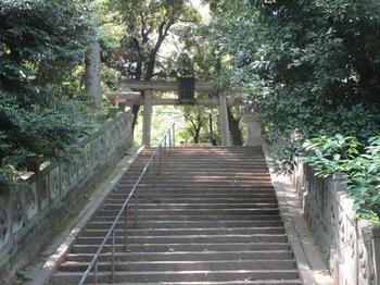氷川神社16 のコピー.jpg