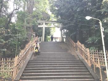 氷川神社 のコピー.jpg