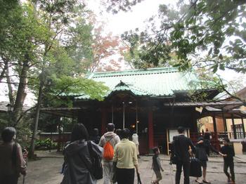 氷川神社本殿 のコピー.jpg