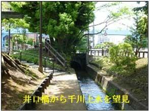 深大寺道3-2.jpg