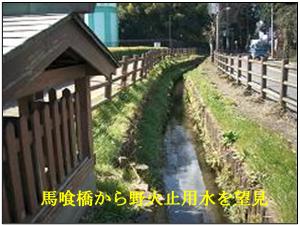 深大寺道5-1.jpg