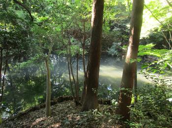 滄浪泉園池 のコピー.jpg