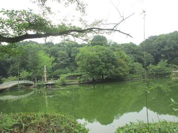 薬師池 のコピー.jpg
