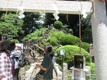 鳩の森神社富士塚 のコピー.jpg